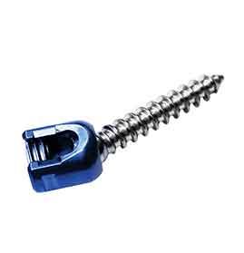 Single Lock Poly Axial Screw